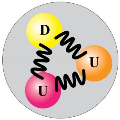 quark dari proton
