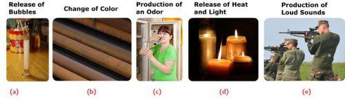 Contoh Bahan kimia dalam Kehidupan 1