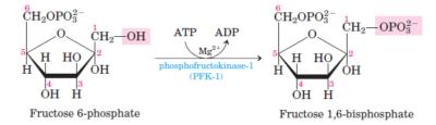 glikolisis langkah 3