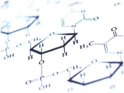 Reaksi kimia