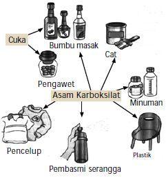 manfaat asam karboksilat