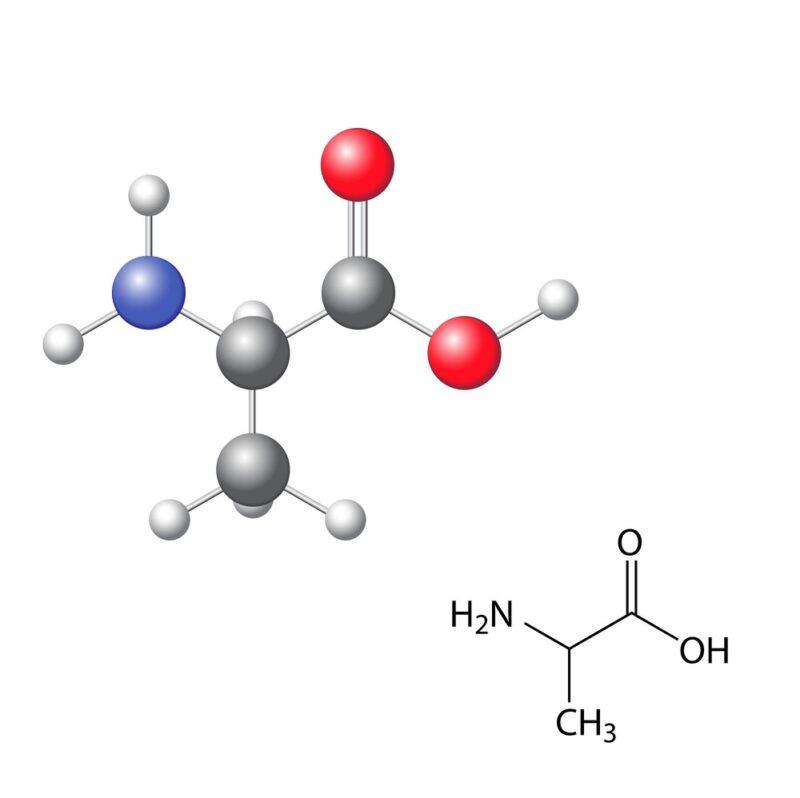 Alanin: Pengertian, fungsi, struktur, sifat dan sumber alanin 1