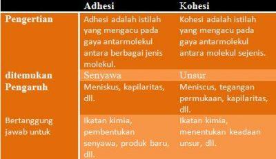 Perbedaan Adhesi dan Kohesi