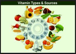Macam – Macam Vitamin dan Fungsinya