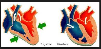 Perbedaan Sistol dan diastol dalam tekanan darah