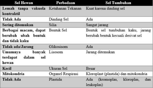 17 Perbedaan sel hewan dan tumbuhan