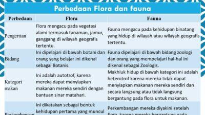 Perbedaan Flora dan fauna