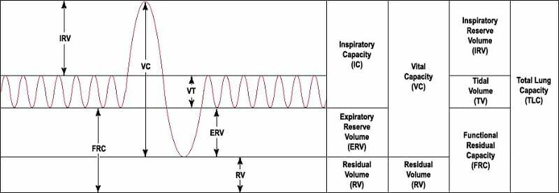 Volume residu: Pengertian, cara mengukur dan pengaruh pada penyakit