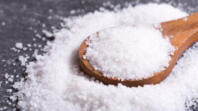 pestisida organik garam
