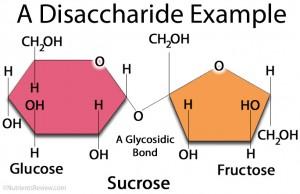 Struktur Disakarida